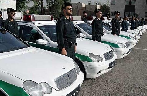 دستگیری سارقان حرفه ای باغات در مهران