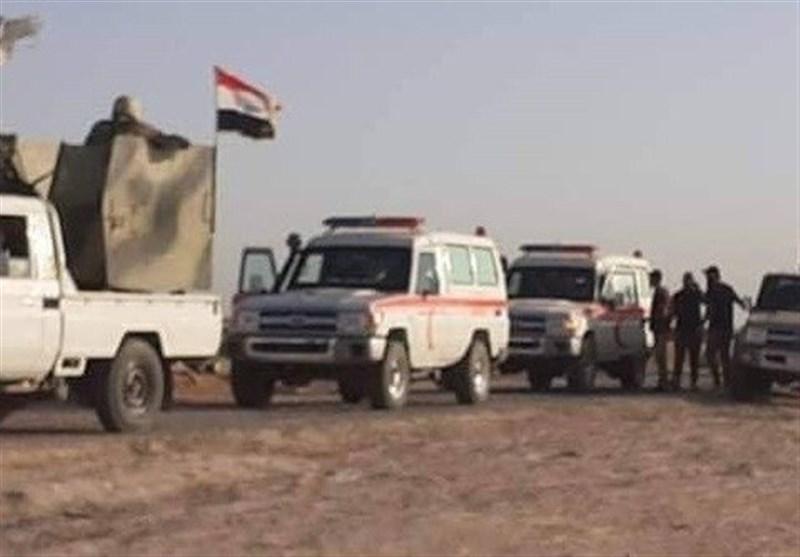 شهادت یک رزمنده حشد شعبی، دستگیری یک تروریست داعشی در غرب الانبار