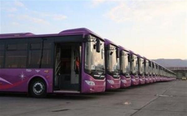 ناوگان اتوبوسرانی ویژه بانوان در پایتخت آغاز به کار کرد