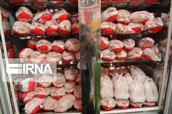 خبرنگاران 3.44 درصد کشتار مرغ کشور مربوط به کردستان است